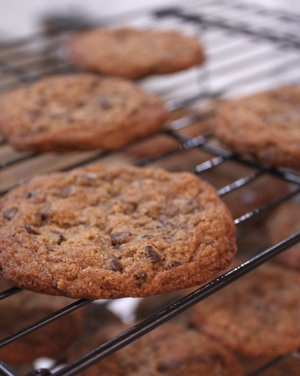 Chocolate Chip Cookies - Healing and Eating